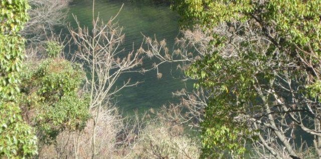 湧水の奥池